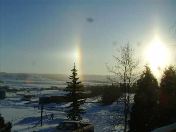 Sun Dogs in early January